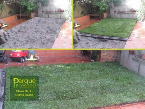 Colocación de césped grama brasileña en Olivos, Vicente López